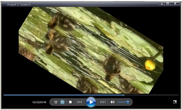 How to rotate a video or an image you can get more information about the program on free video editor description page ccuart Images
